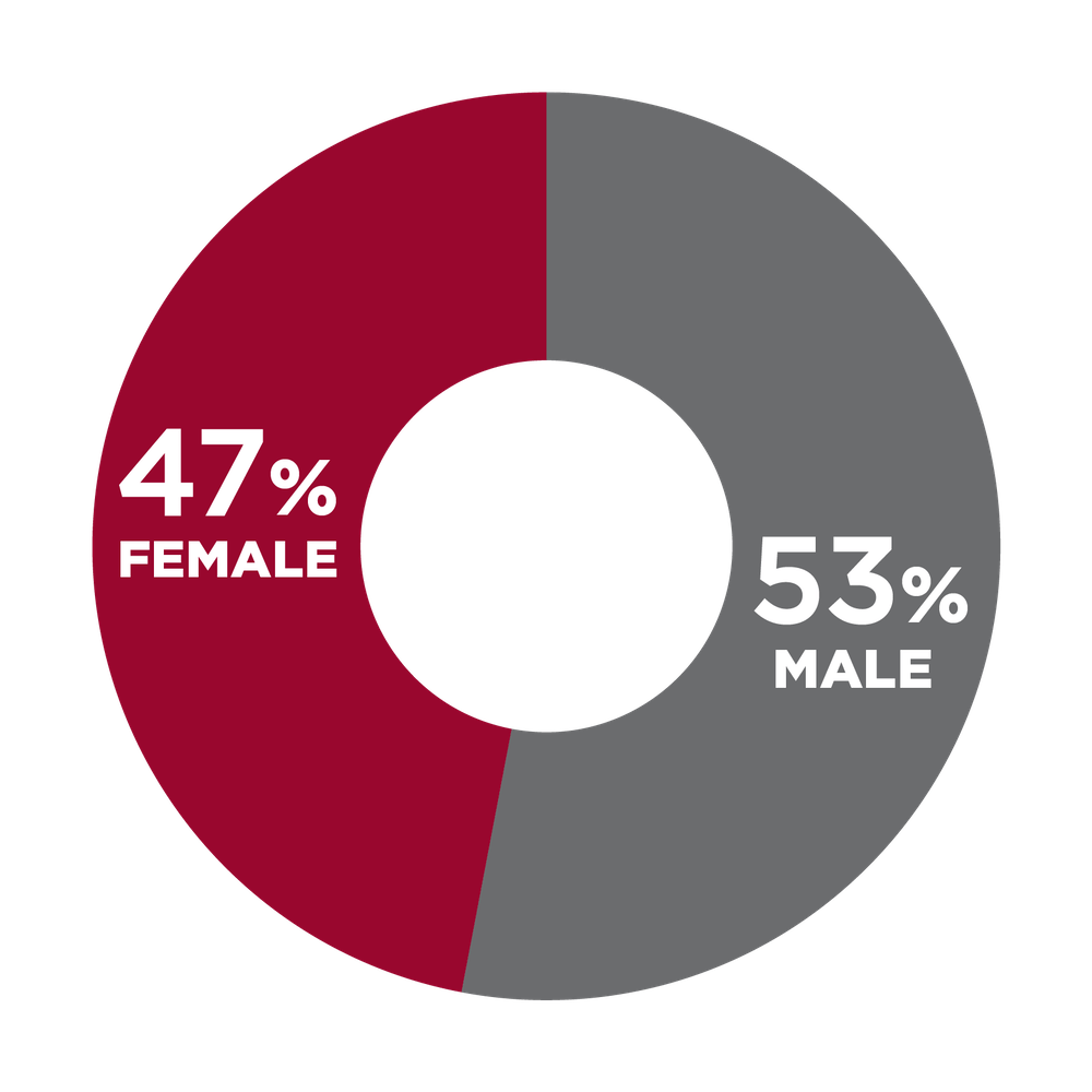 Pie chart showing gender diversity at USHG: 47% female, 53% male