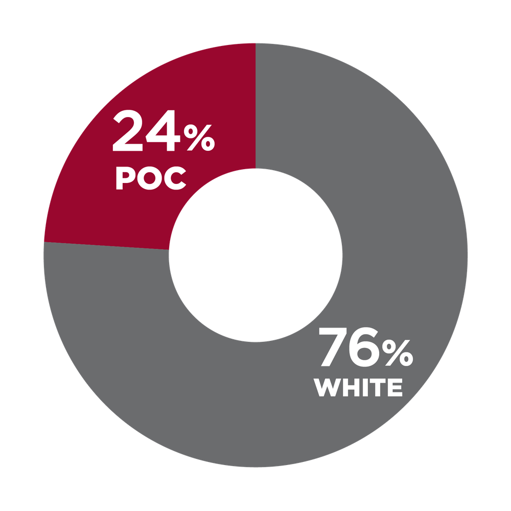 Pie chart showing racial diversity in home office staff 24% POC, 76% white