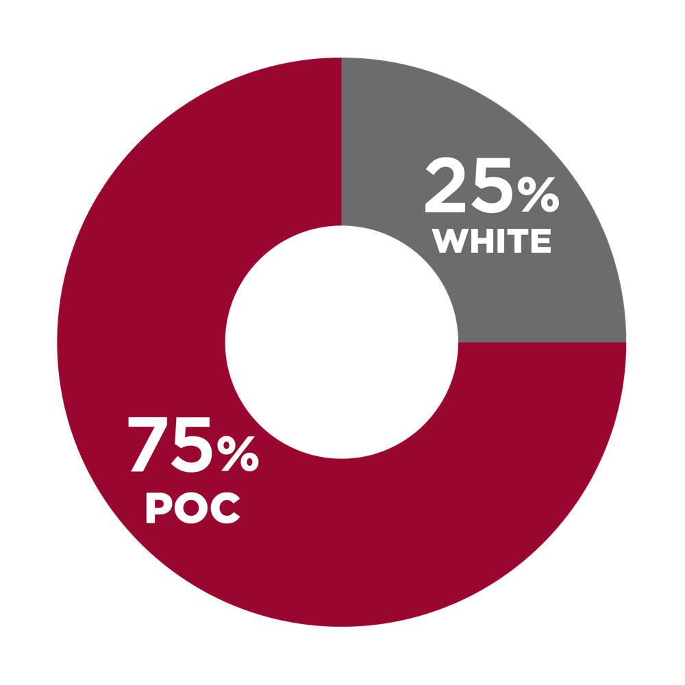 Pie chart showing racial diversity in operations staff 75% POC, 25% white