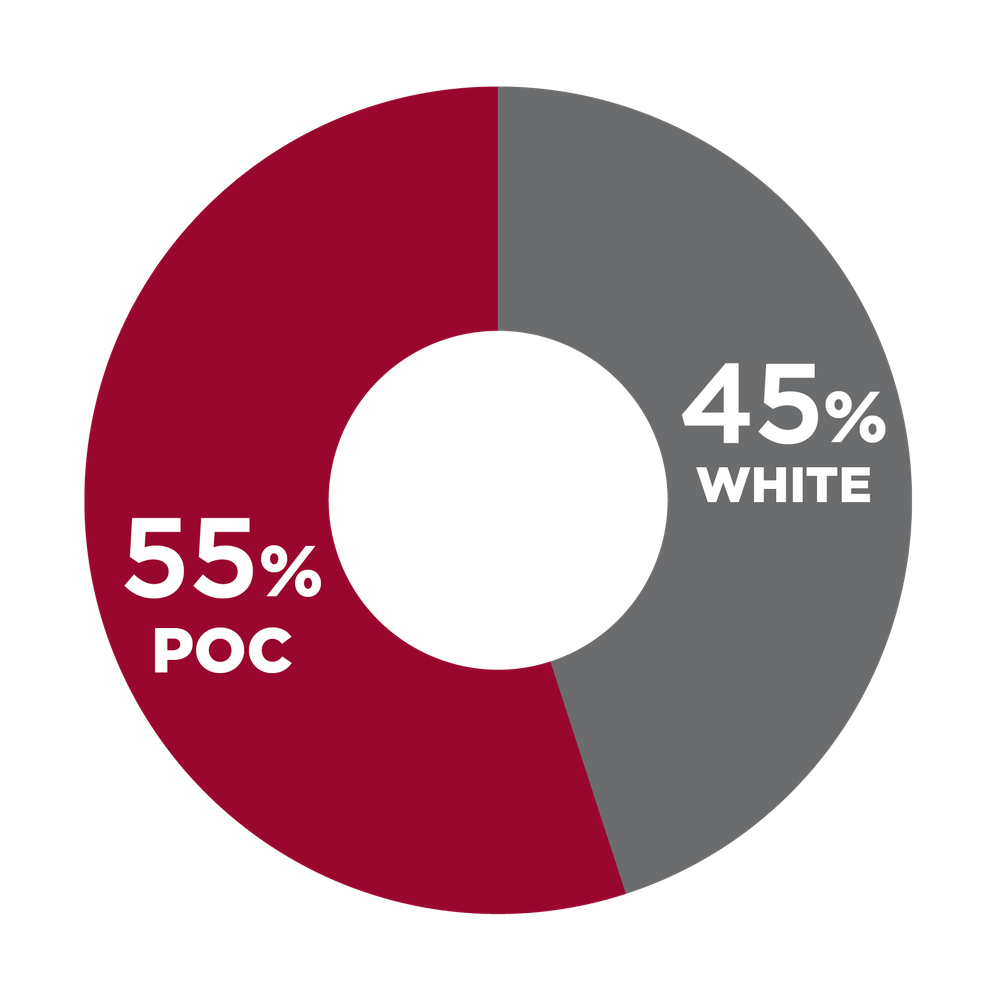 Pie chart showing racial diversity at USHG: 55% POC, 45% white