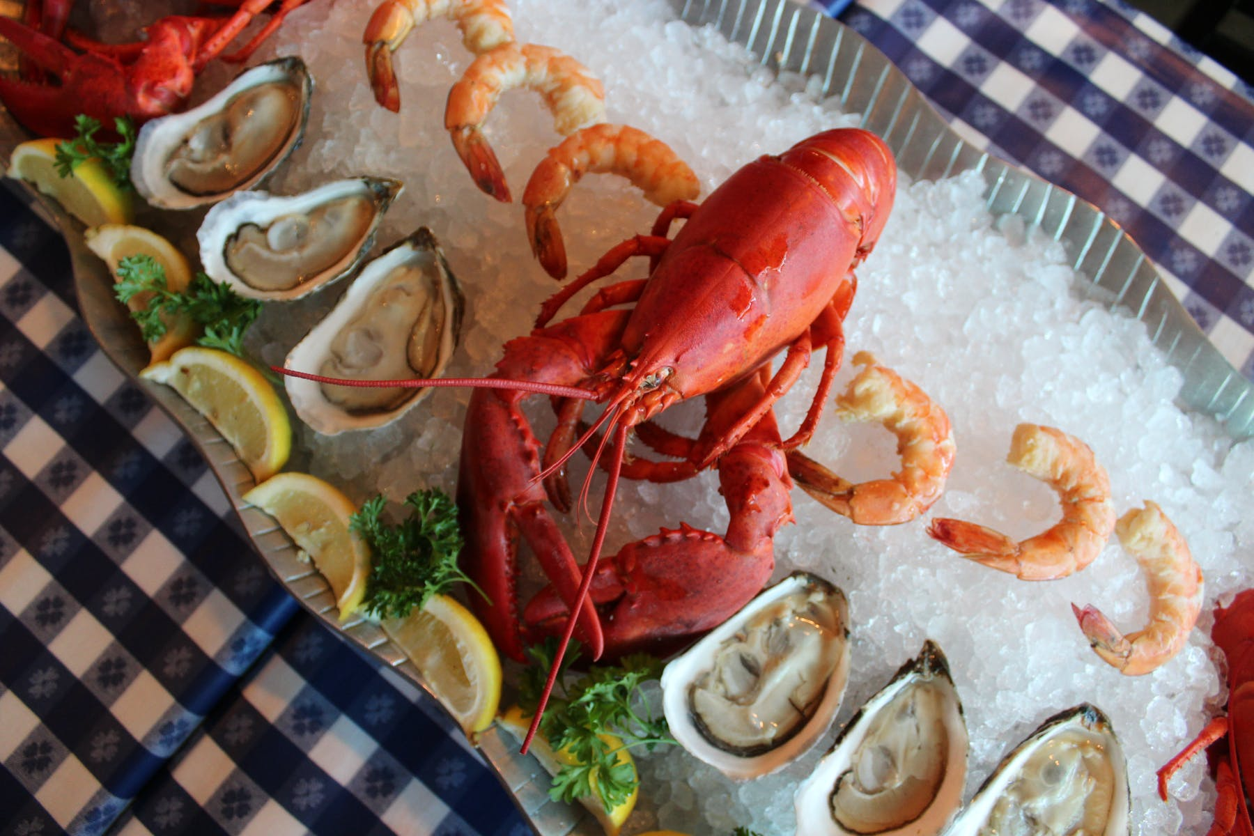 a lobster and oysters