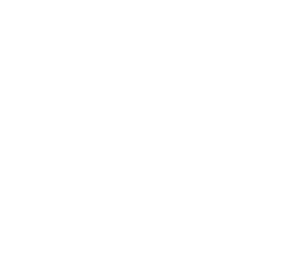 The Broken Shaker Home