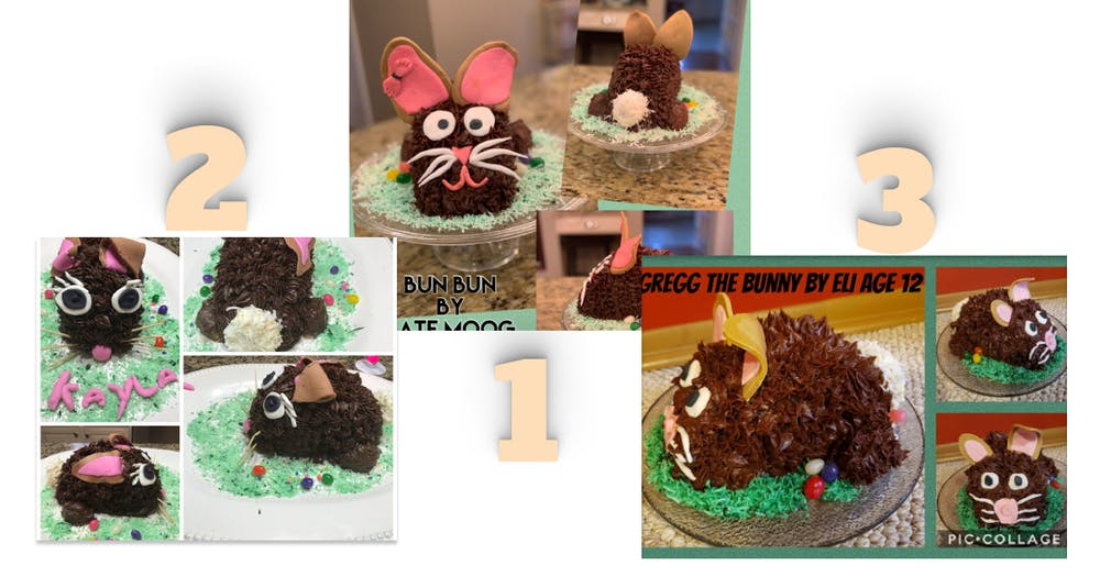 a cake made to look like a cat