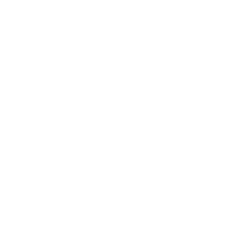 Stout Burgers and Beers Home